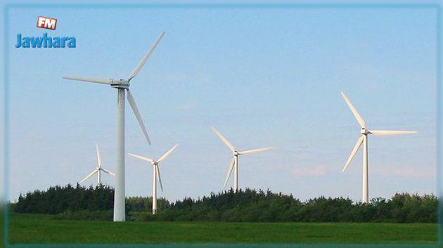 اهتمام ألماني بسوق طاقة الرياح في تونس