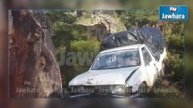 jendouba 1 mort et 7 bless s dans un accident de la route. Black Bedroom Furniture Sets. Home Design Ideas