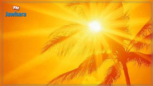 Baisse de température à partir du 11 août — Météo- Tunisie
