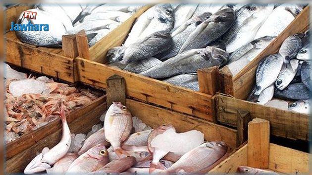 رغم تراجعه : تونس تحقّق فائضا تجاريا في منتجات الصيد البحري