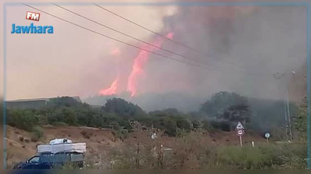 القيروان : حريق هائل بأرض فلاحية.. والنيران تقترب من المنازل