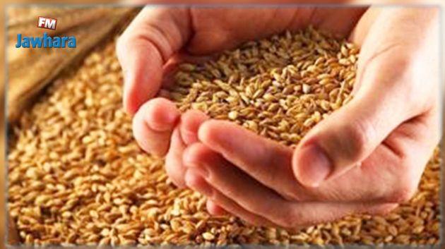 سمير الطيب : وارداتنا من الحبوب ستتقلّص
