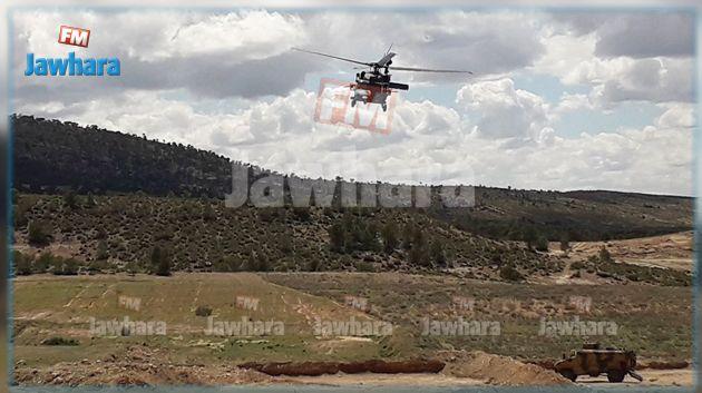 إرهابي يكشف عن مواقع ألغام وذخيرة في جبل عرباطة