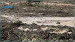الكاف: تضرّر 200 هك من الزراعات الكبرى جراء تساقط البرد