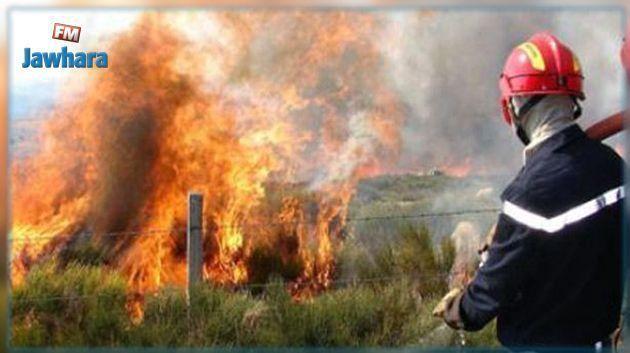 الكاف: السيطرة على حريق في السرس