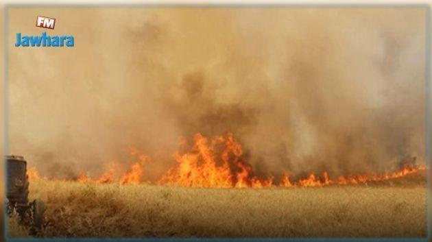 الحماية المدنية تطفئ أكثر من مائة حريق في يوم واحد