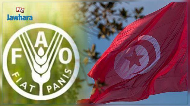 La Tunisie présente sa candidature pour un siège au conseil de la FAO